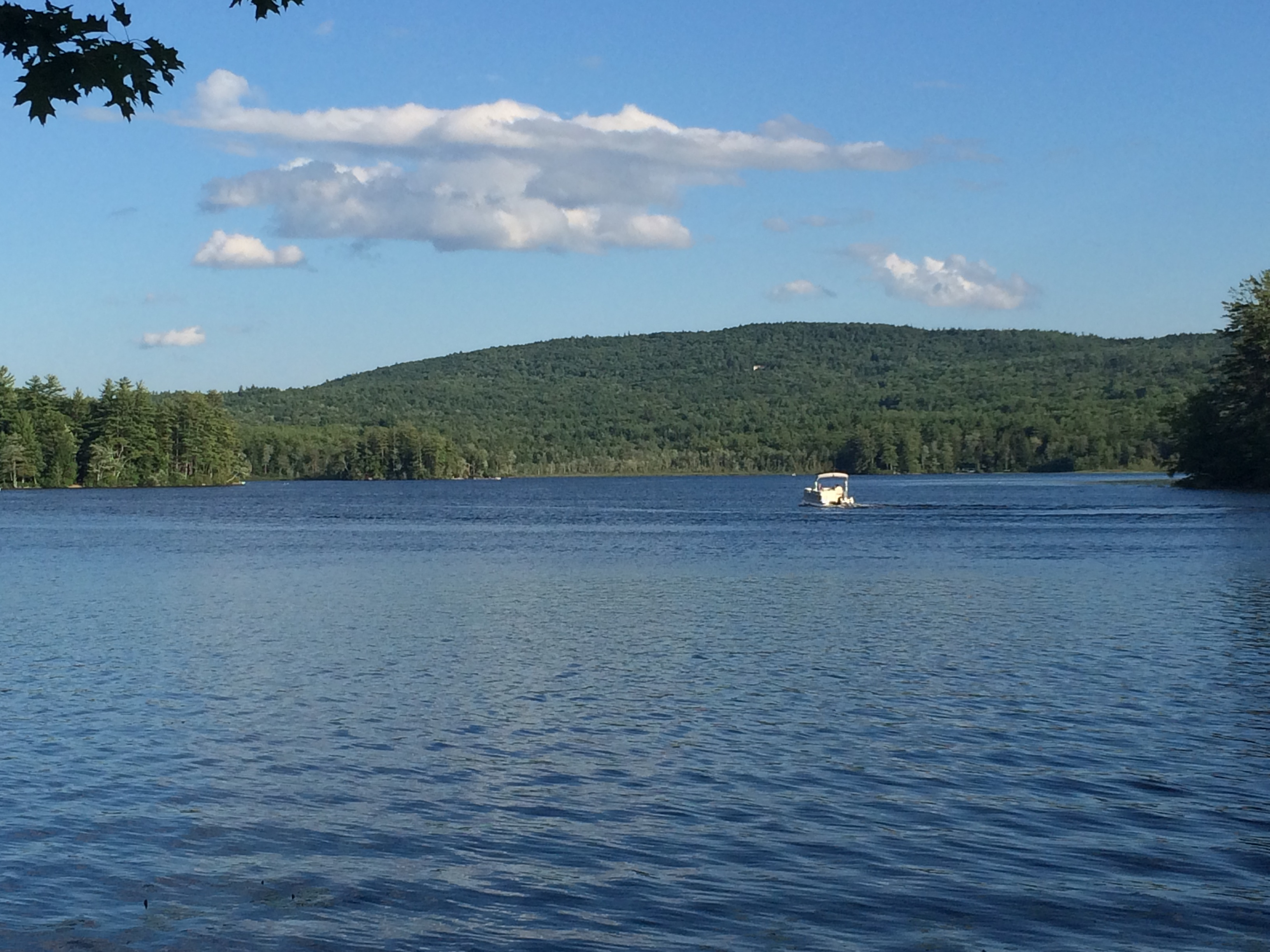searches additional estate real family watkins winnipesaukee cabins compounds nicole lake region lakes